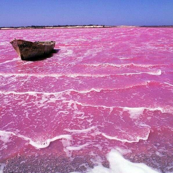 بحيرة ريتبا الوردية في السنغال تتميز بتغير لونها من الأرجواني الخفيف إلى