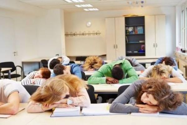 Have you ever fallen asleep during a class