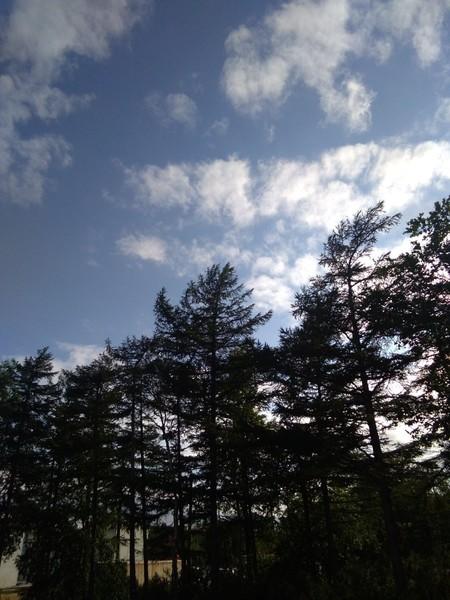Какая погода за окном кинь фото
