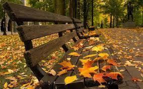 собственный рассказ  ночь холод листья ветер мысли улыбка сообщение книги