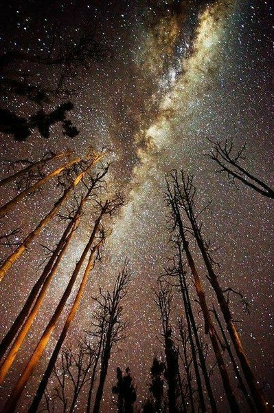 ты как звезда ты как она  далеко но сияешь так ярко что увидеть можно в другой