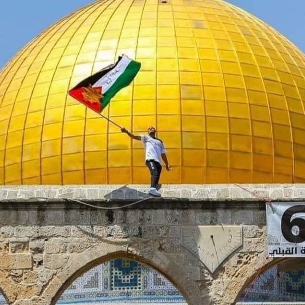 هام جدا   الهدنة مش انتصار اسرائيل ولا مرة خضعت لهدنة يمكن اليوم يمكن بكرا
