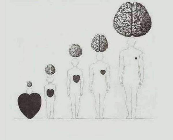 كل ما عمرنا بيزيد عقلنا بيكبر وقلبنا بيصغر