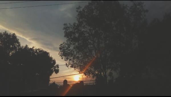 Publica una foto de la vista que tienes desde tu ventana y compártela