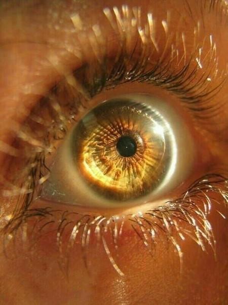 Какие глаза потвоему мнению красивее голубые или зелёные