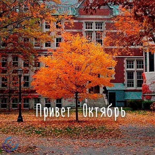 Счастливого октября