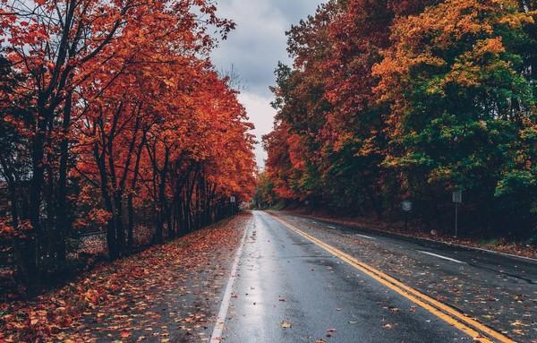 Ждёшь осень
