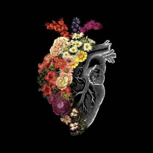 و إن القرآن يزهر القلب كما يزهر الماء الورد